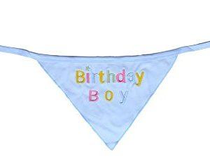 Alemon-Dog-Pet-Birthday-Bandana-for-Dogs-Blue-0-0